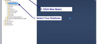 database queries tutorial